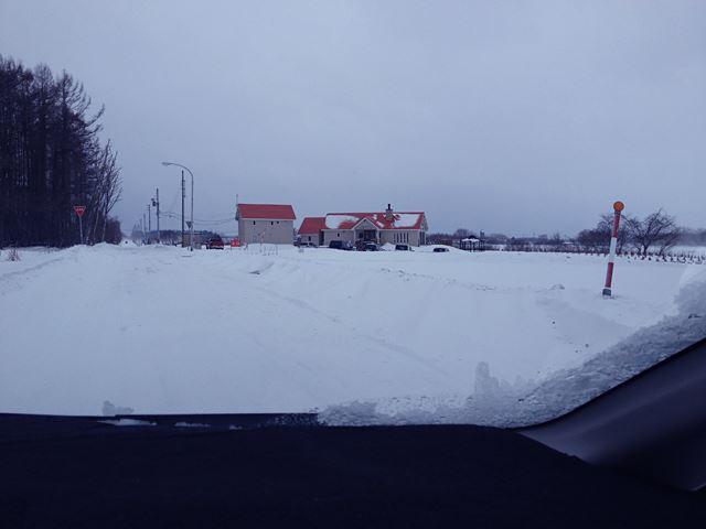 雪原の中のミルティーロ