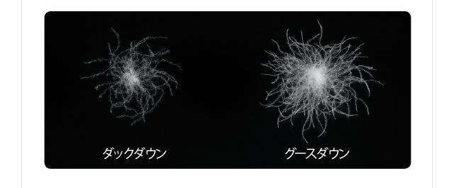 ダック / グース