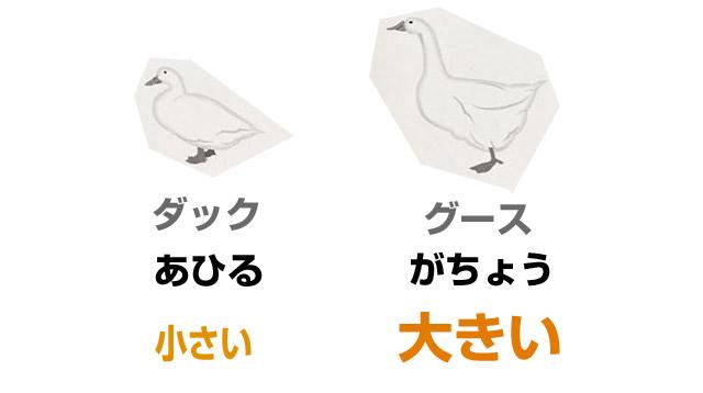 アヒルの羽毛と、ガチョウの羽毛。