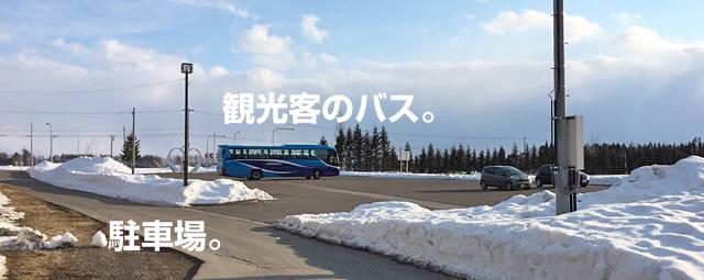 観光のバス