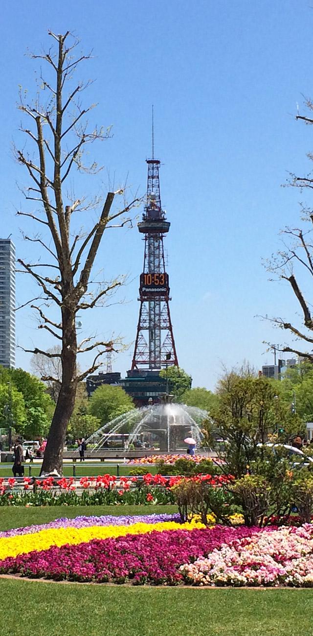 2017年5月17日の大通公園とテレビ塔