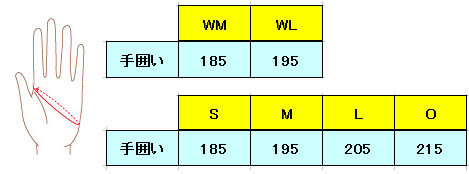 GSM16613のサイズ表