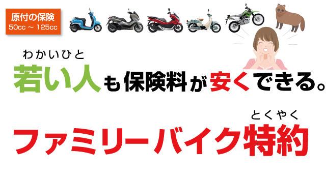ファミリーバイク特約で若者の保険料が安い。