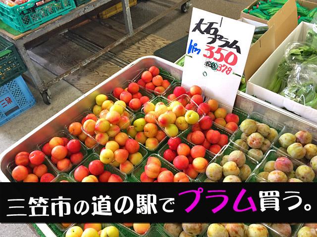北海道の美味しいプラム