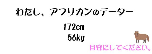 モデルの身長と体重