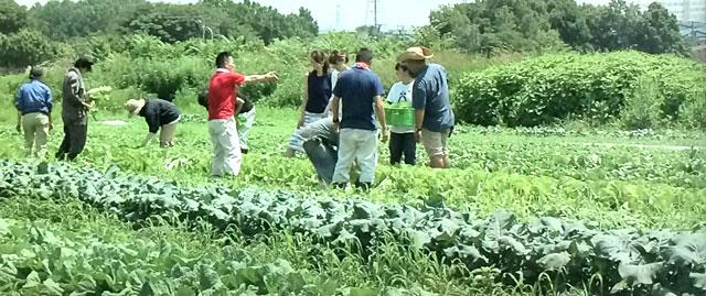 農作業にゲキを飛ばす慎吾ちゃん。
