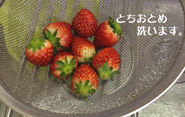 イチゴを洗います。