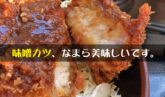 札幌で美味しい味噌かつ