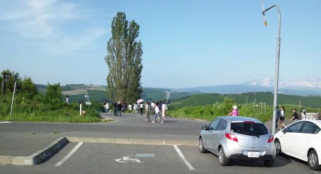 ケンメリの木と観光客