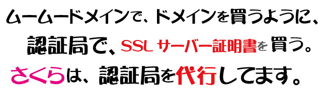認証局でSSLは購入できる。
