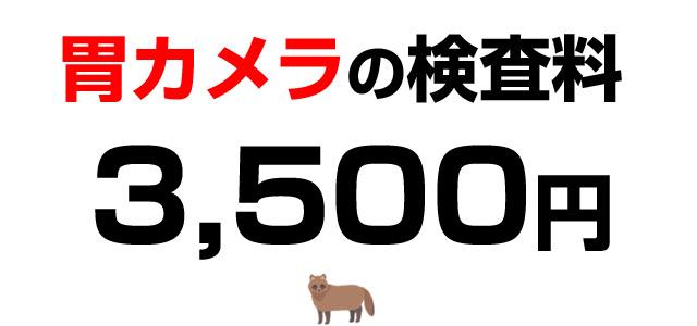 胃カメラ検査料・3,500円