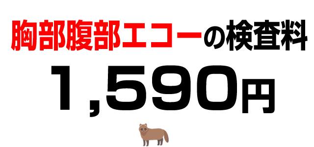 胸部腹部エコー検査料・1,590円