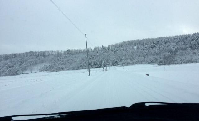 雪だけが続く道