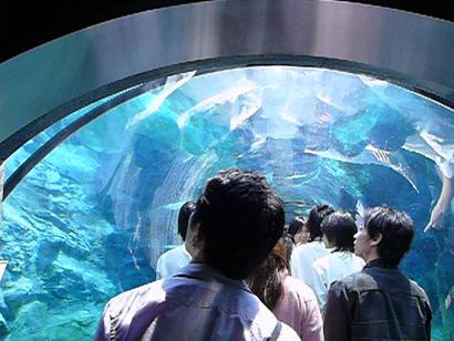 旭川旭山動物園
