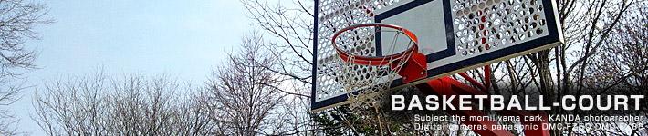 紅葉山公園バスケット場