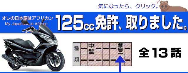 125ccの免許を取りました。