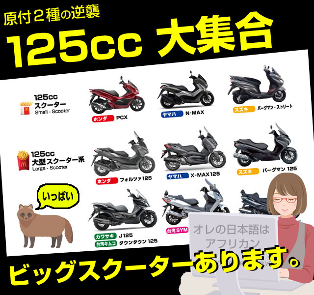 決定版・全型掲載!125ccバイク比較一覧。小型ビッグスクーター盛りだくさん。