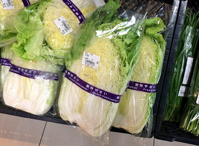 JAいしかりの白菜