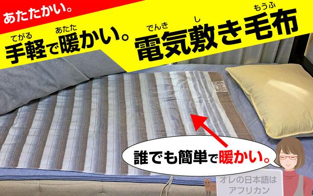 椙山NA-023S電気毛布は、札幌でも暖かいです。