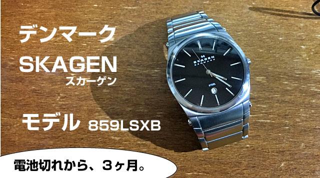 デンマークのスカーゲン腕時計。859LSXB