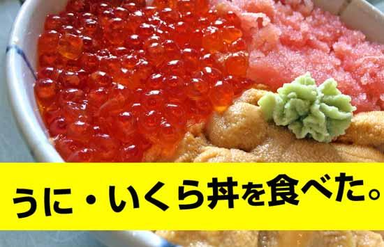 北海道で美味しいウニいくら丼を食べる