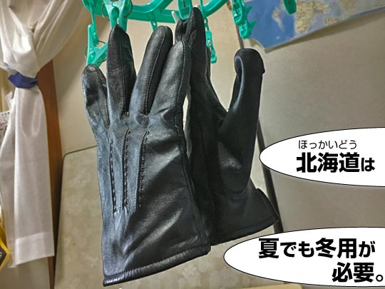 冬用のカジュアル革手袋