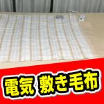 コードが少し短いかな。買いましたDB-U12T-C電気敷き毛布
