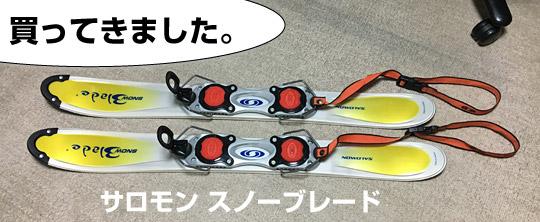 サロモンのスノーブレードというシリーズのファンスキー板