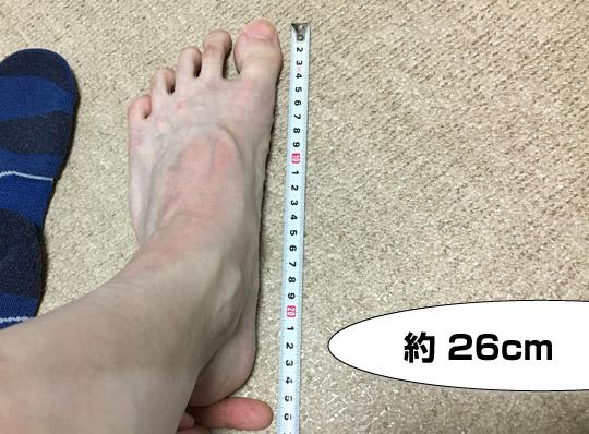 実寸26cm