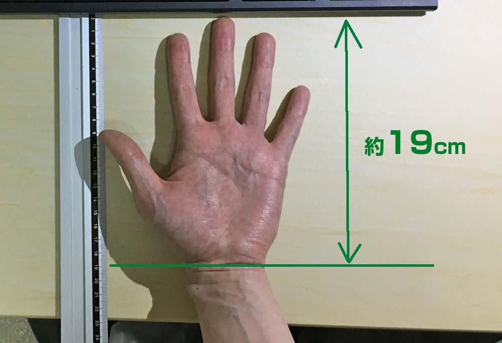 私の手の実寸サイズ